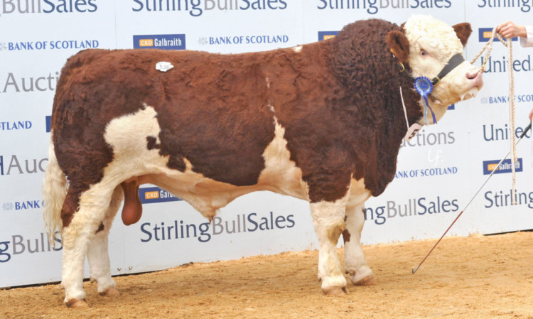 Kilbride Farms Double Action from W H Robson, sold for 18,000 gns