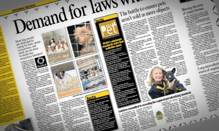 The Courier examined the issue of puppy farming in a special series earlier this week.