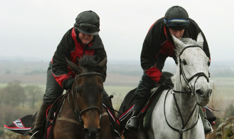 Silver By Nature, with jockey Peter Buchanan, leads the pack during training at Milnathort ahead of the 2011 Grand National.