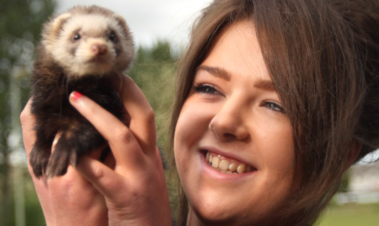 Zoe Smith is thrilled to have Gill the polecat back home.