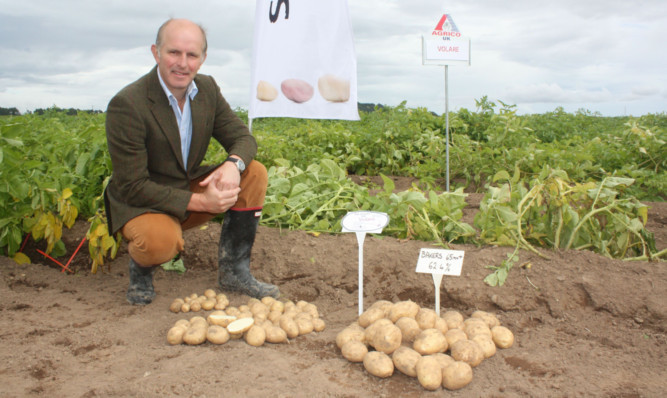 Agrico executive director Archie Gibson.