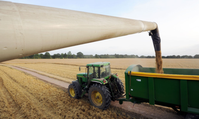 There is an estimated 13% improvement in overall cereal yields over the last year