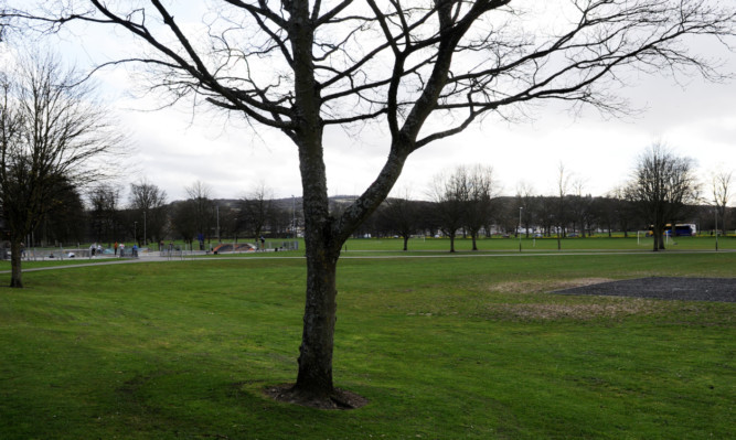 The South Inch in Perth.
