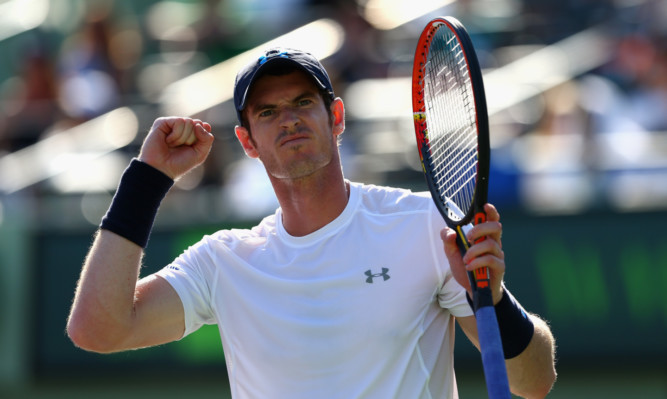 Andy Murray celebrates match point and his 500th ATP Tour victory against Kevin Anderson.