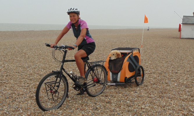 Maggie and Oscar have been racking up the miles.