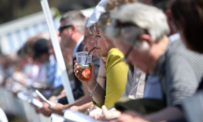 Punters enjoying the racing in the sun.