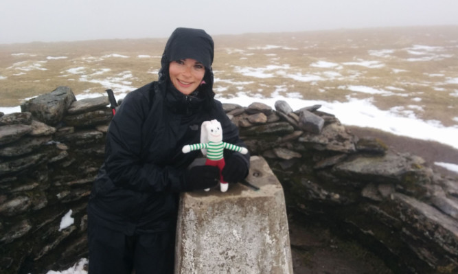 Gayle with the Archie rabbit on top of Ben Wyvis.