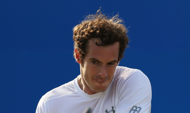 Andy Murray: shook off early struggles in both sets to beat Lu Yen-hsun 6-4 7-5 in the Aegon Championships.
