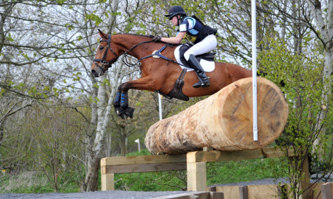 Olivia Strang Steel and Cooley Q prevail to top the Novice section at Kirriemuir, which included a number of new fences for 2015