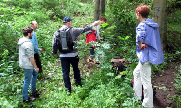 The Dighty Connect Conservation Group has found hogweed has grown to as much as ten feet.