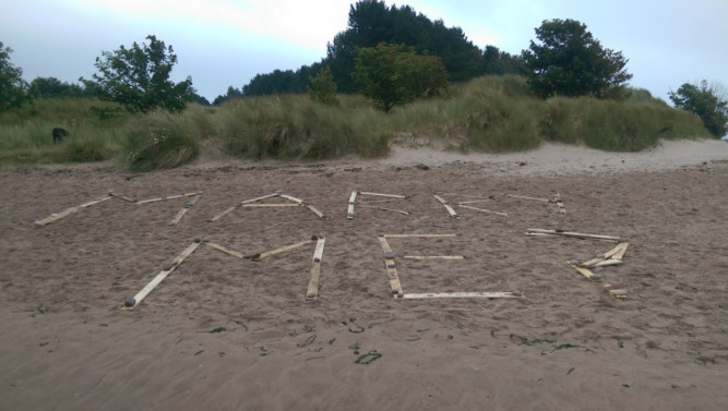 Danyle's romantic proposal was spotted on the beach by a dog walker.