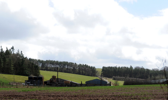 The site of the proposed Bandirran windfarm beyond the trees near Balbeggie.
