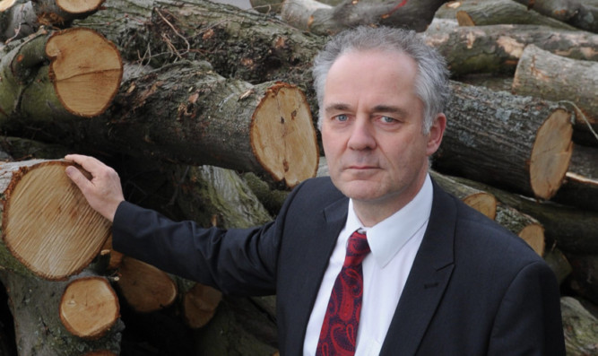 Mr Black is angry over the felling of protected trees.