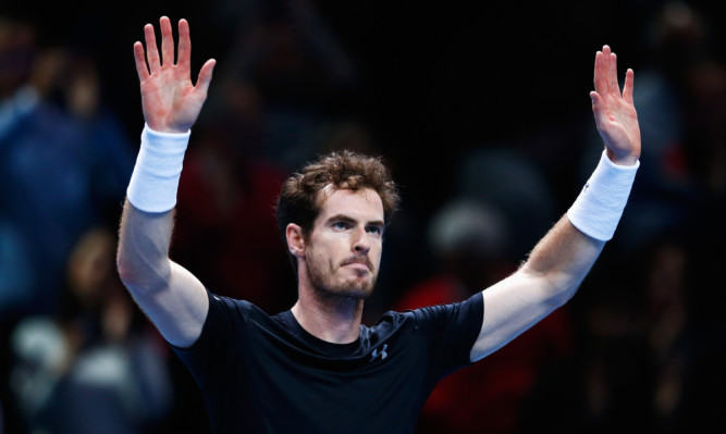 Andy Murray celebrates victory in his men's singles match against David Ferrer.