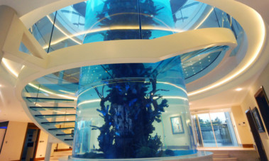 The 50ft tubular aquarium which was a centre-piece of the house near Gleneagles.