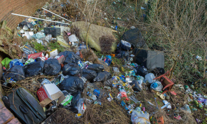 Fly-tipping in Wellsley Road has caused a rat infestation at nearby homes and businesses.