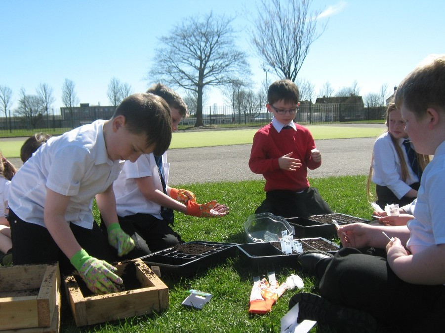 Pupils at St Luke and St Matthews Primary School planting seeds, some of which have been flown through space.