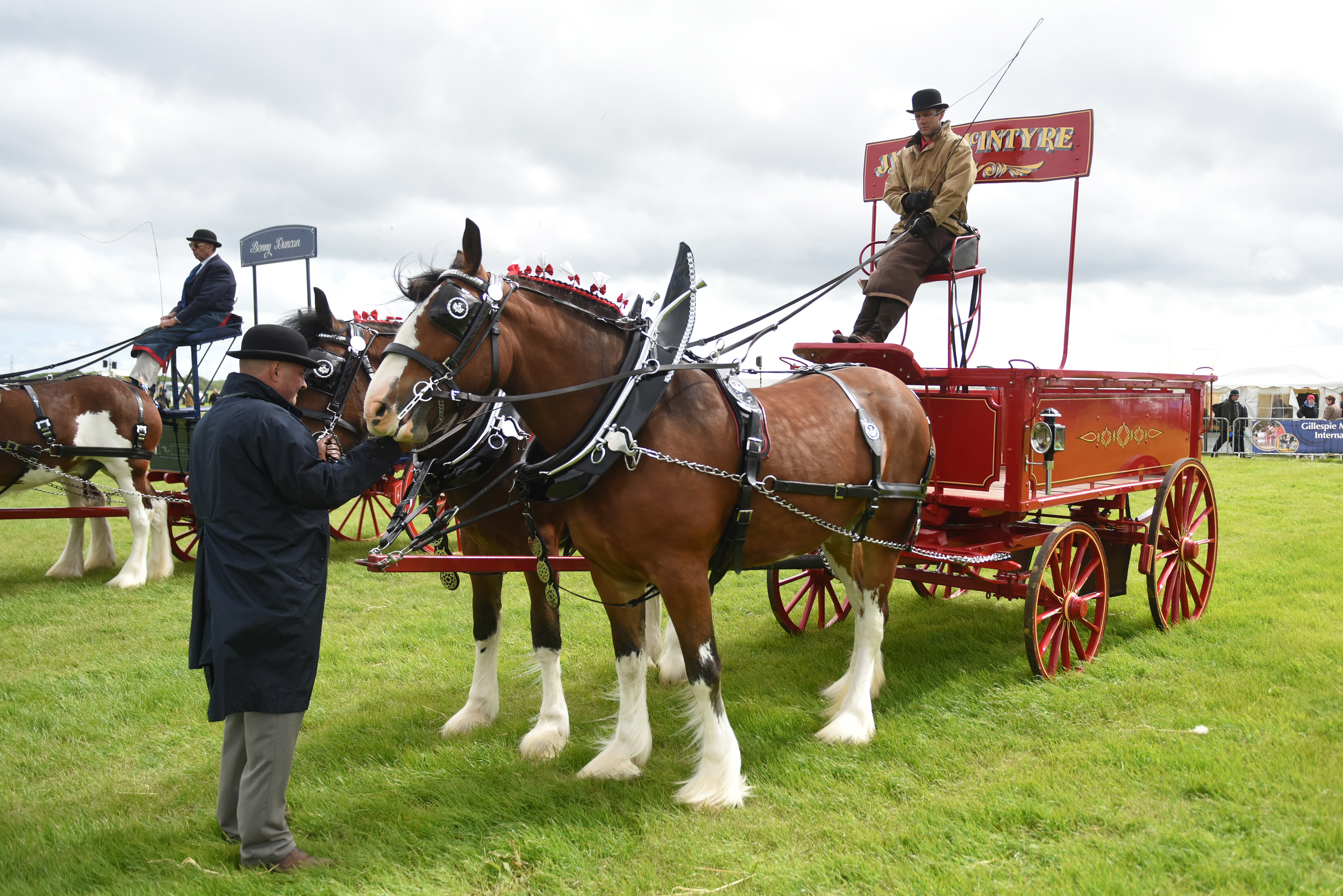 The heavy horses are a big attraction at Central and West Fife show