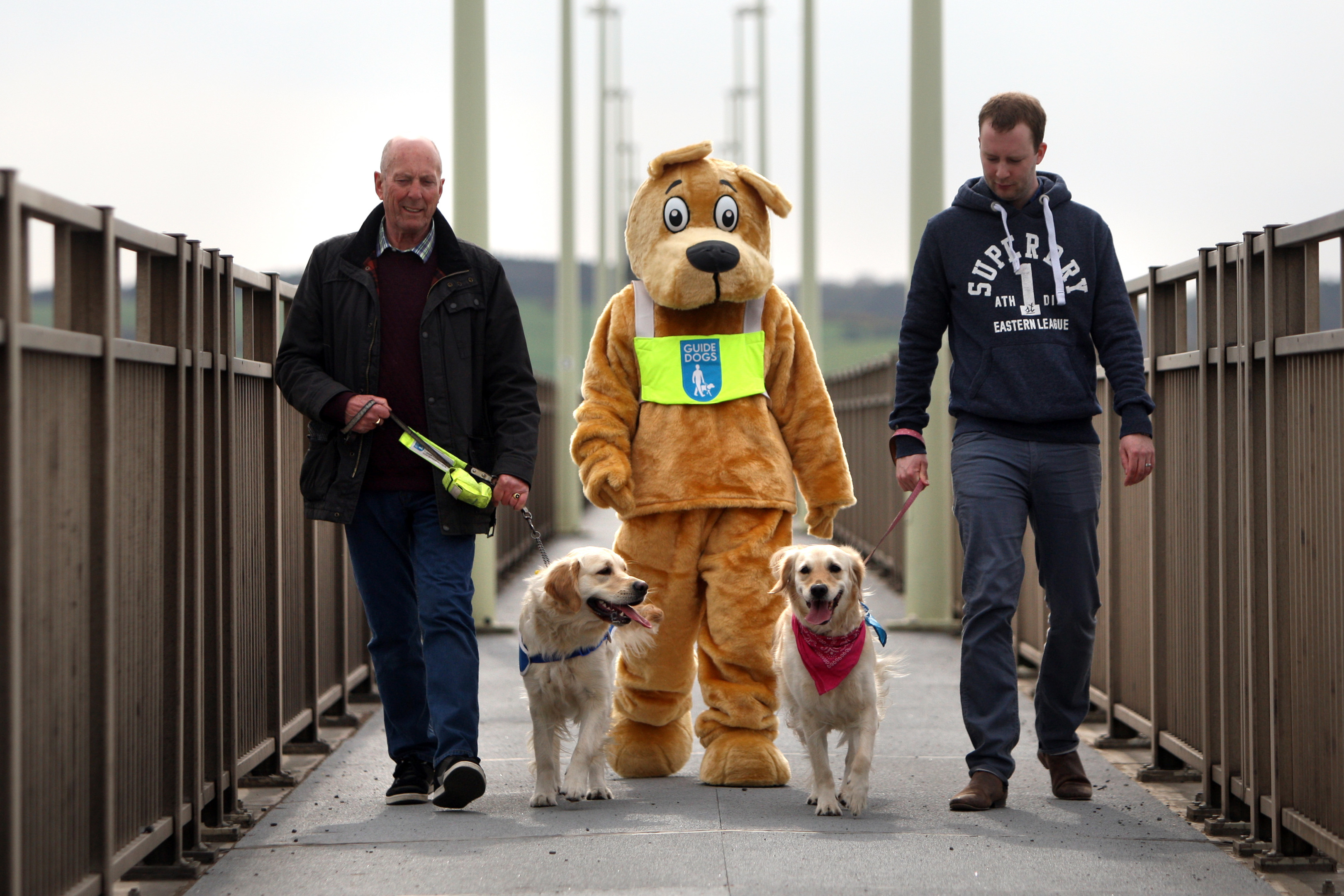Guide Dogs mascot, Hero with Les Banks and Hesta and Alex Comrie and Mia.