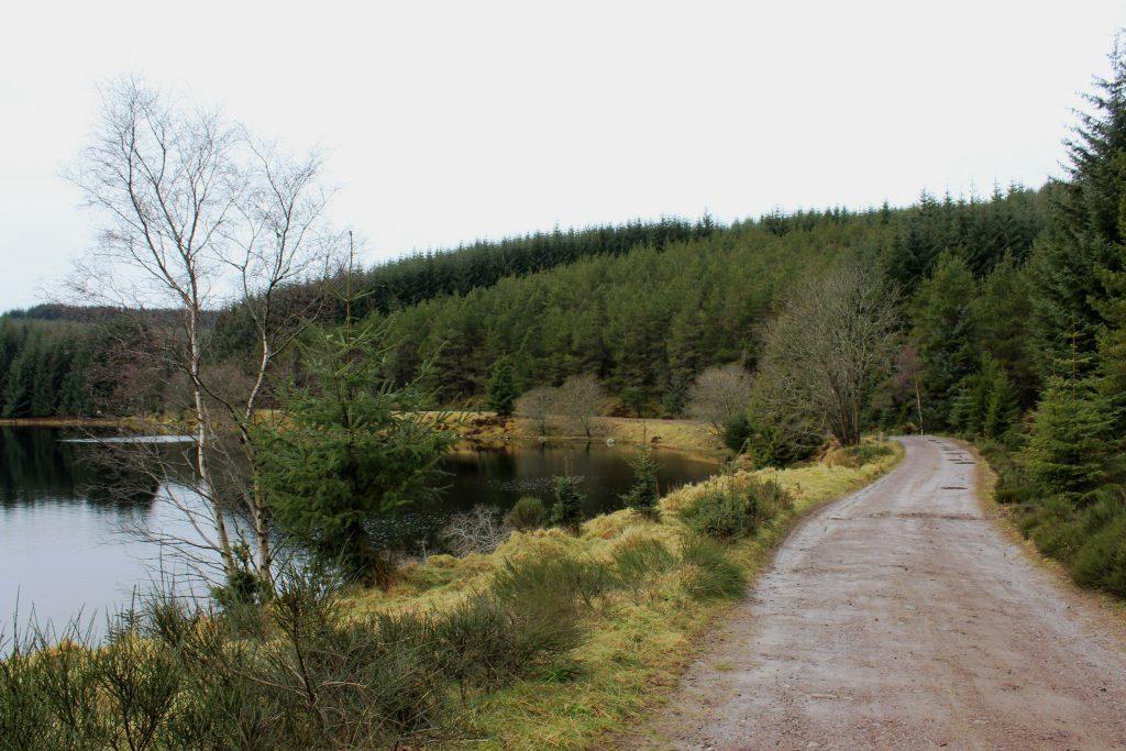 4. Lochside track - James Carron
