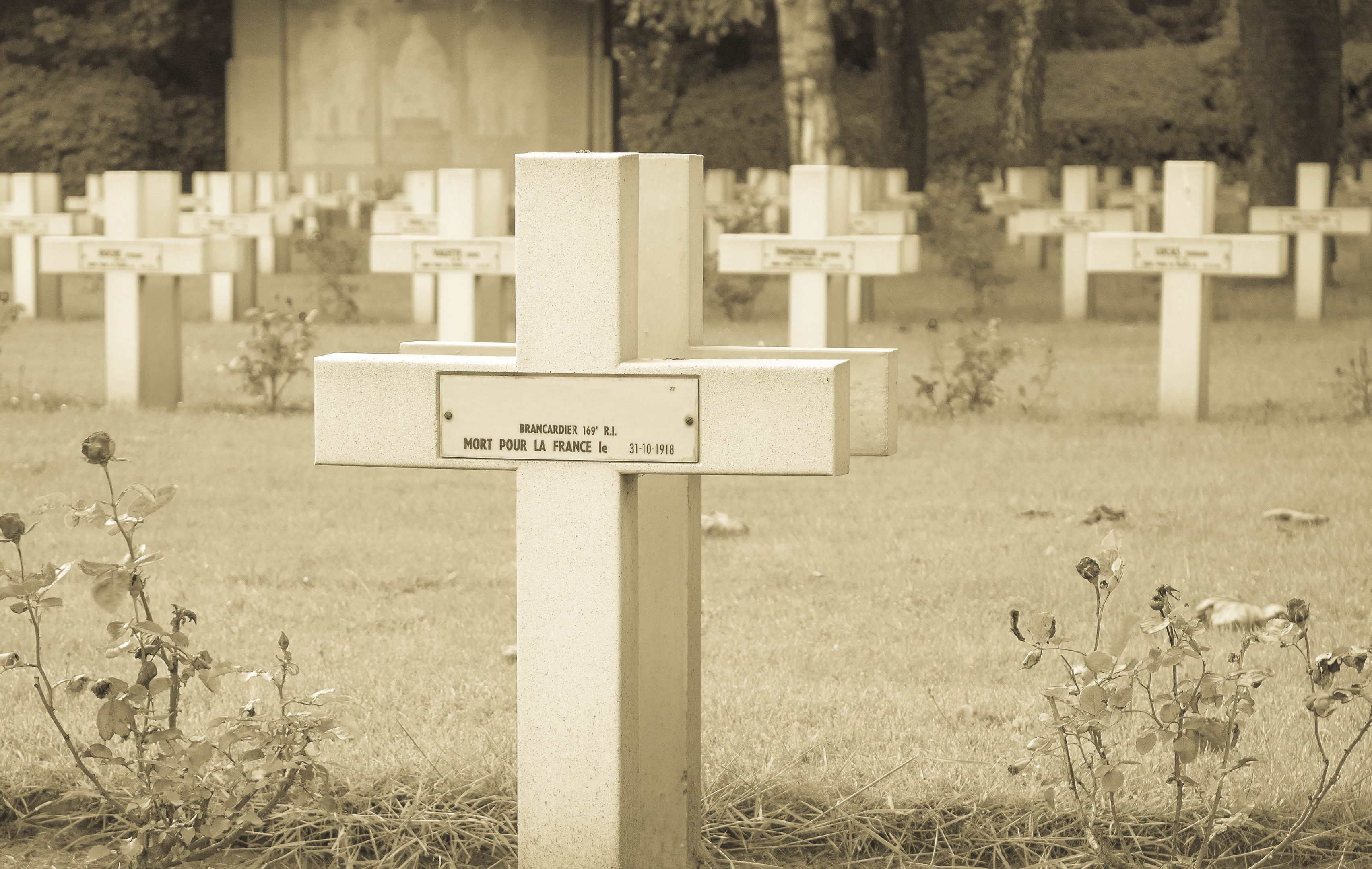 Flanders Fields in Belgium are now synonymous with the First World War.  But Flanders' links with Scotland date back centuries.
