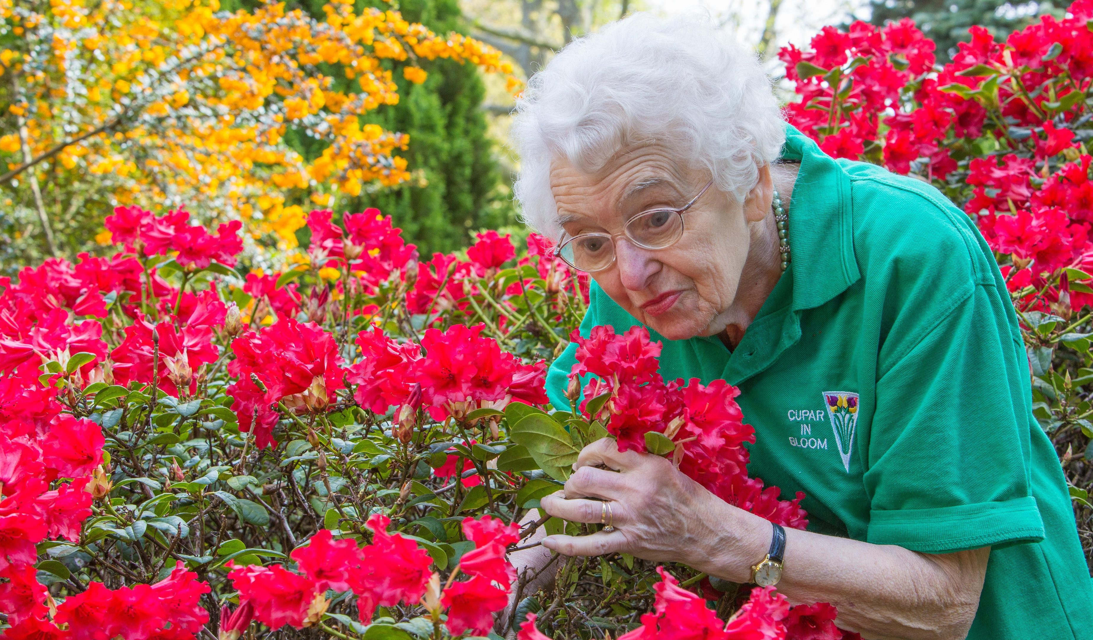 Bloomin' lovely - Chairwoman Mary Law with the Azalea Flowers in the gardens of Elmwood College.