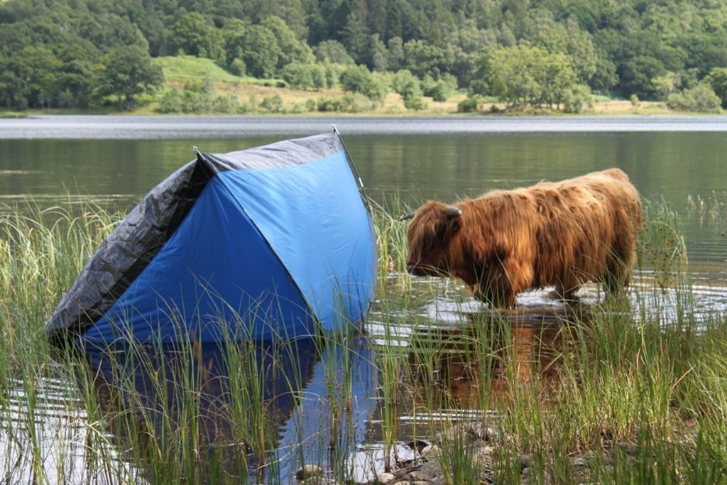 An abandoned tent spoils the scene at Loch Achray.