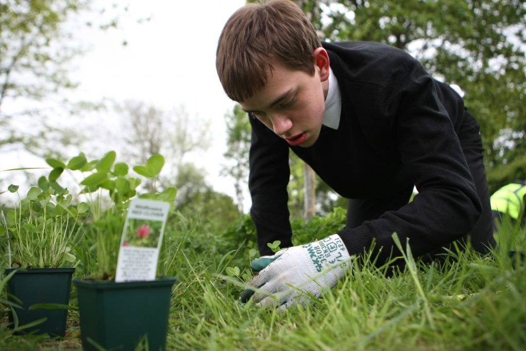 Bell Baxter High School pupil Arran Howe planting some of the wildflowers at the orchard in Cupar