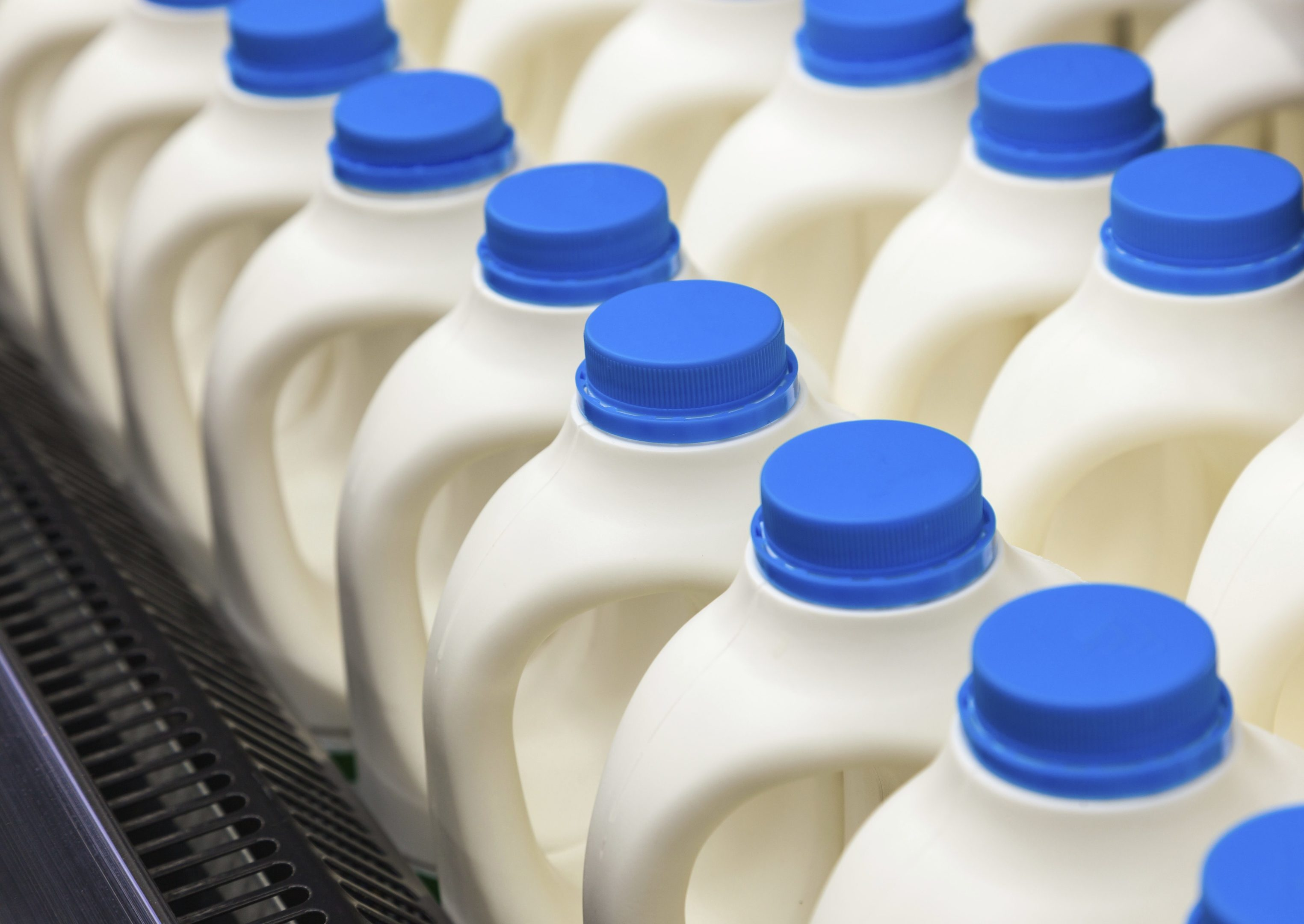 The transformation of the First Milk business is now complete