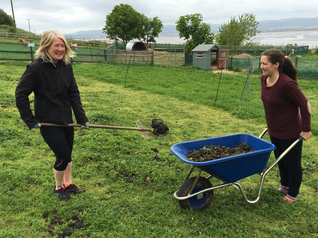 Volunteers get stuck in doing all kind of jobs - including the picking up of horse poo!