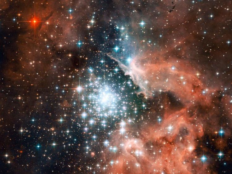 Star formation is the field in which Professor Sargent specialises