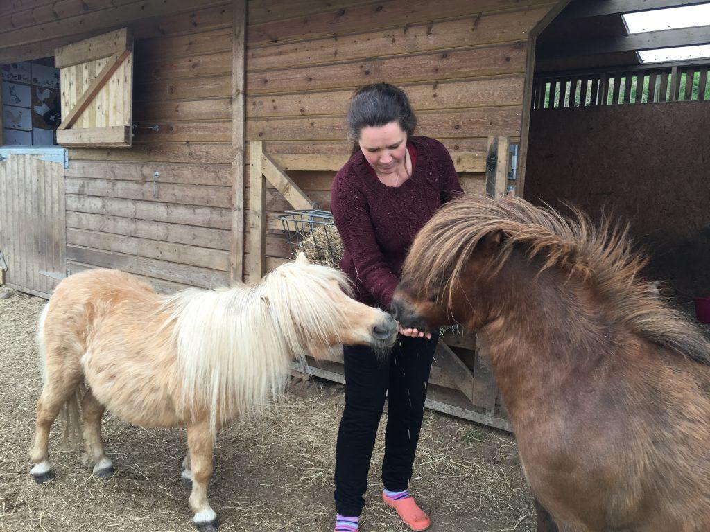 Karen Morrison feeds the ponies