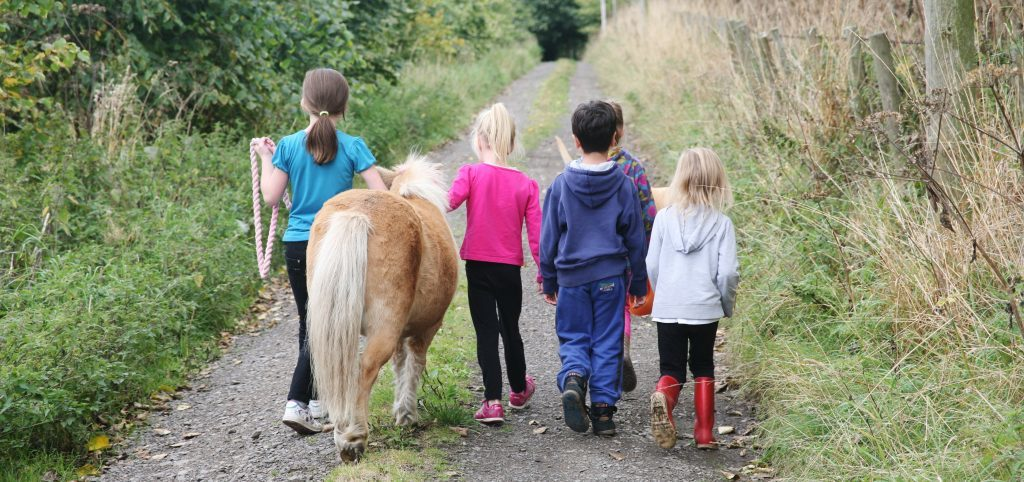 Children at STAR can spend time looking after the animals