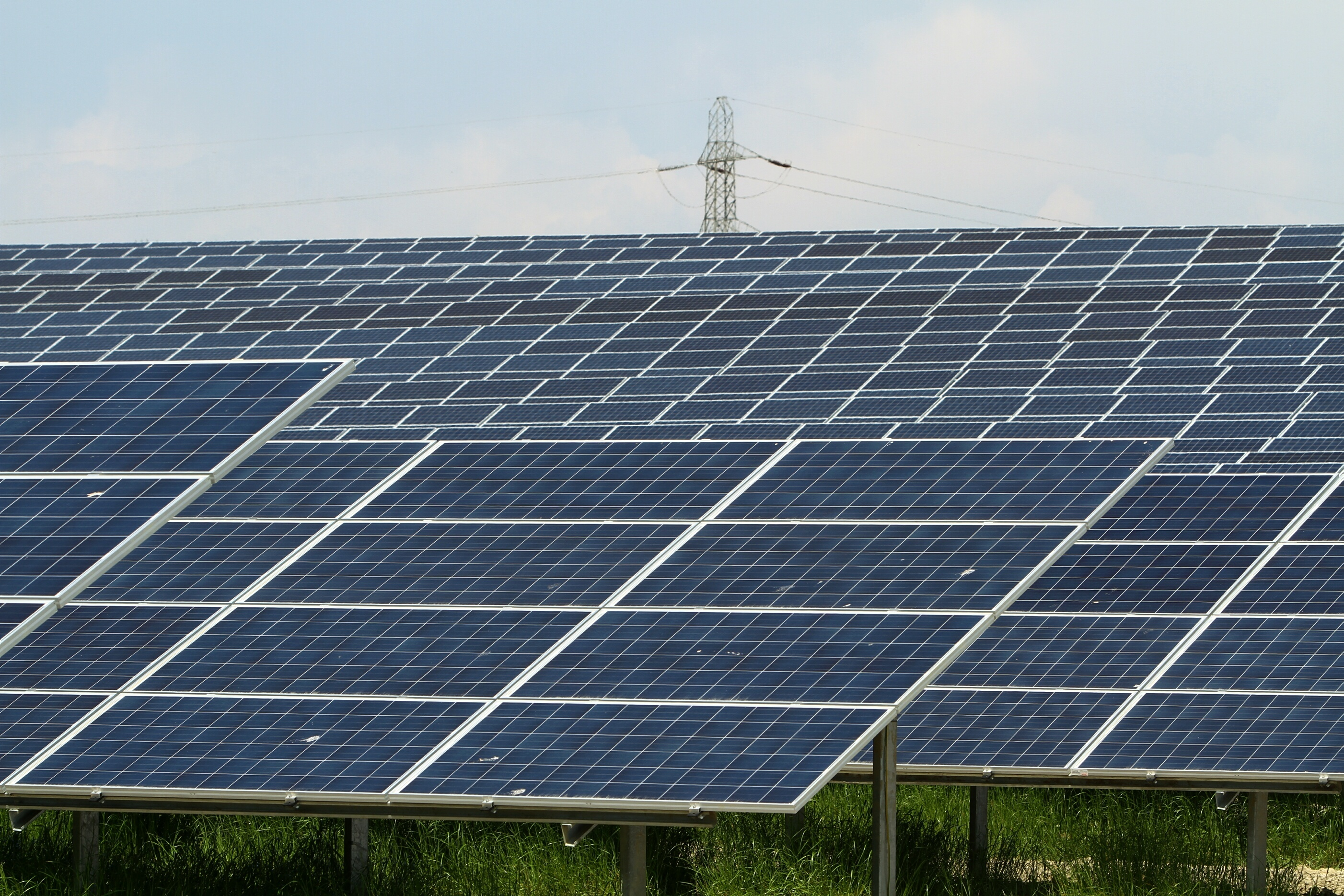 The solar farm near Errol