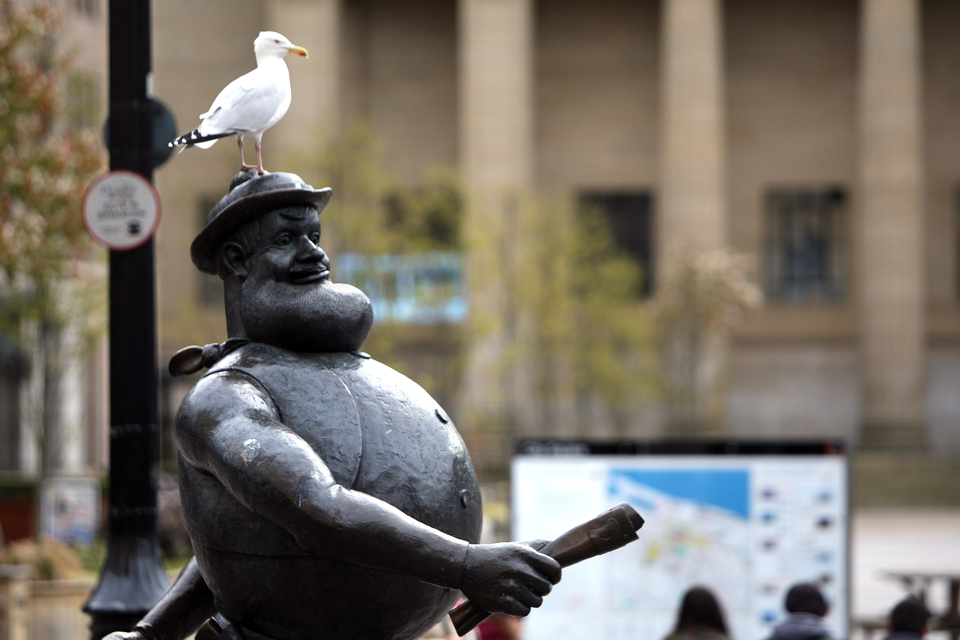A gull perching on top of Desperate Dan.