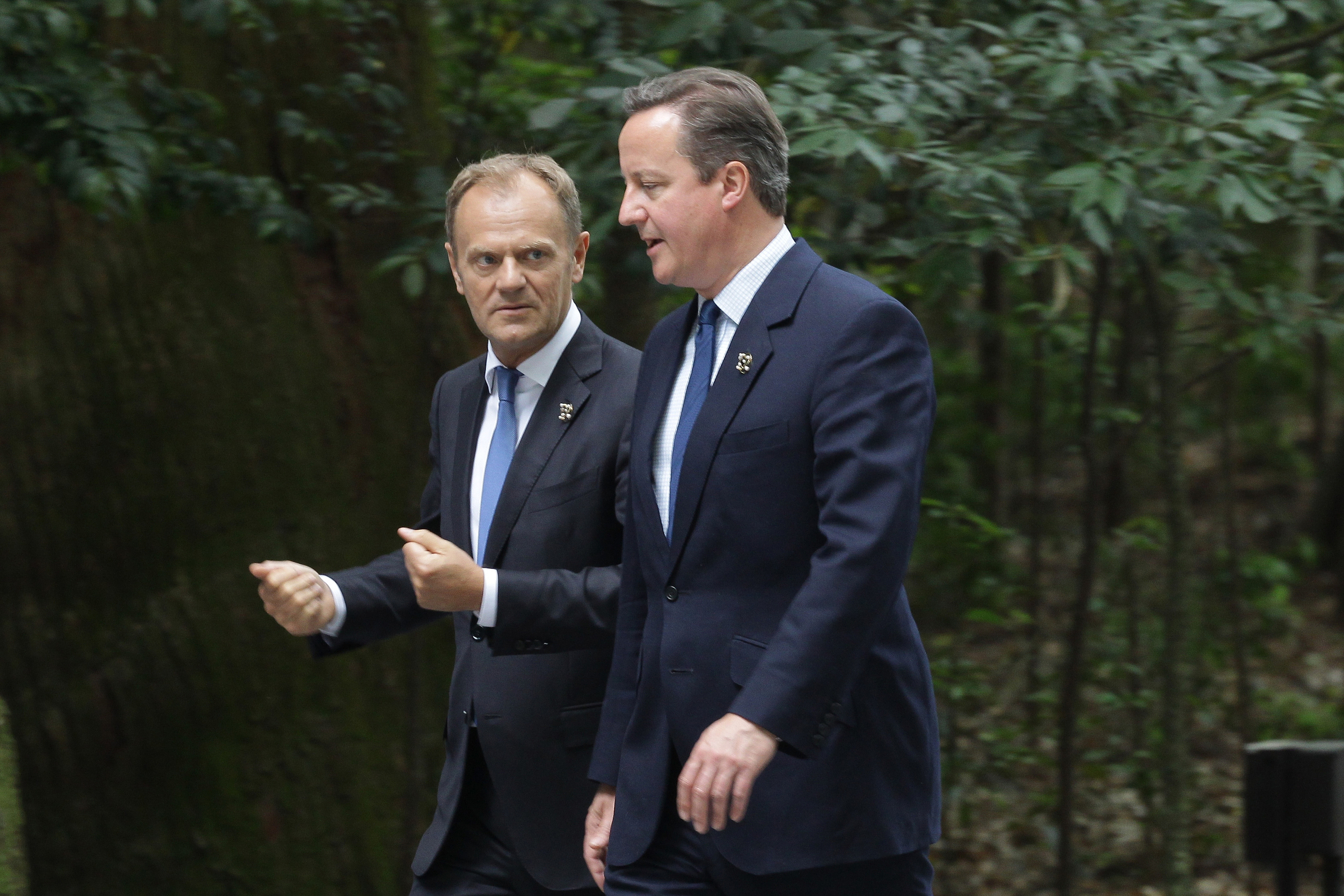 European Council President Donald Tusk talks with Prime Minister David Cameron.