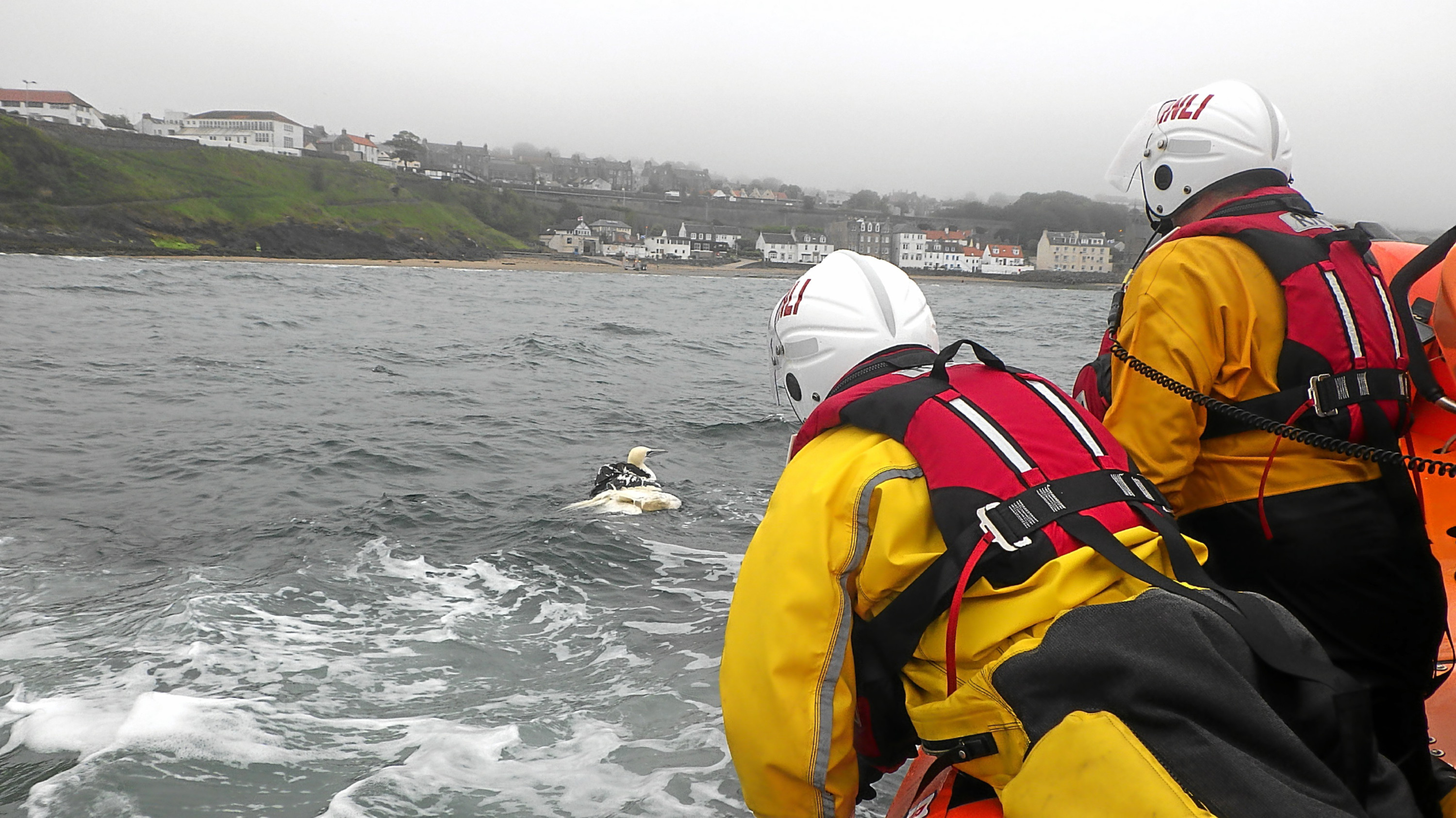 Members of the Kinghorn RNLI team during the rescue operation.