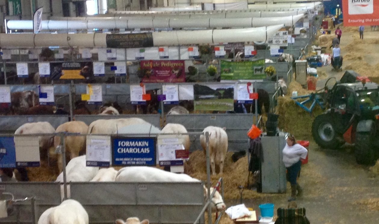 Farmers are starting to absorb the news at the Highland Show