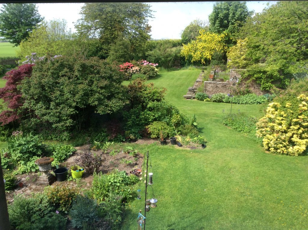 David Dunsmuir's garden in Letham, Angus.