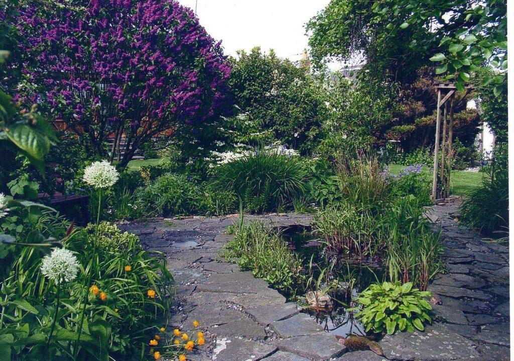 Dorothy Fyffes garden in Carnoustie.