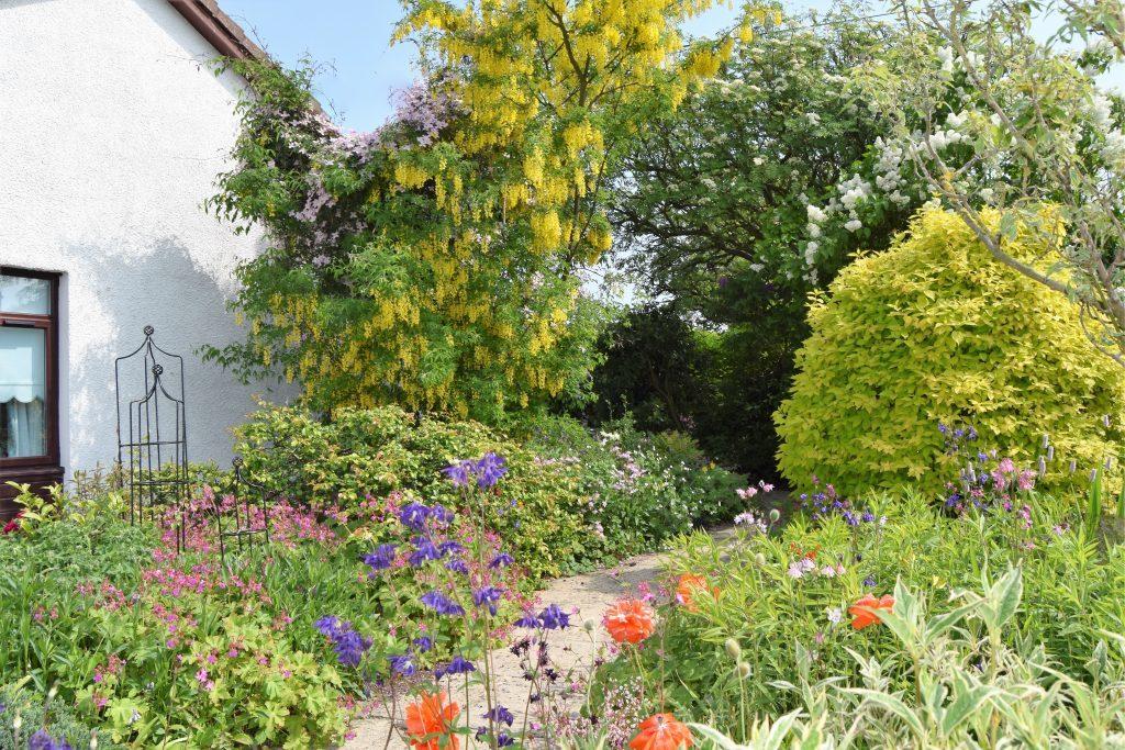 Marilyn Leven's glorious garden in Coaltown of Balgonie, Fife.