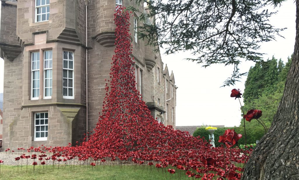 The poppies at Balhousie Castle.