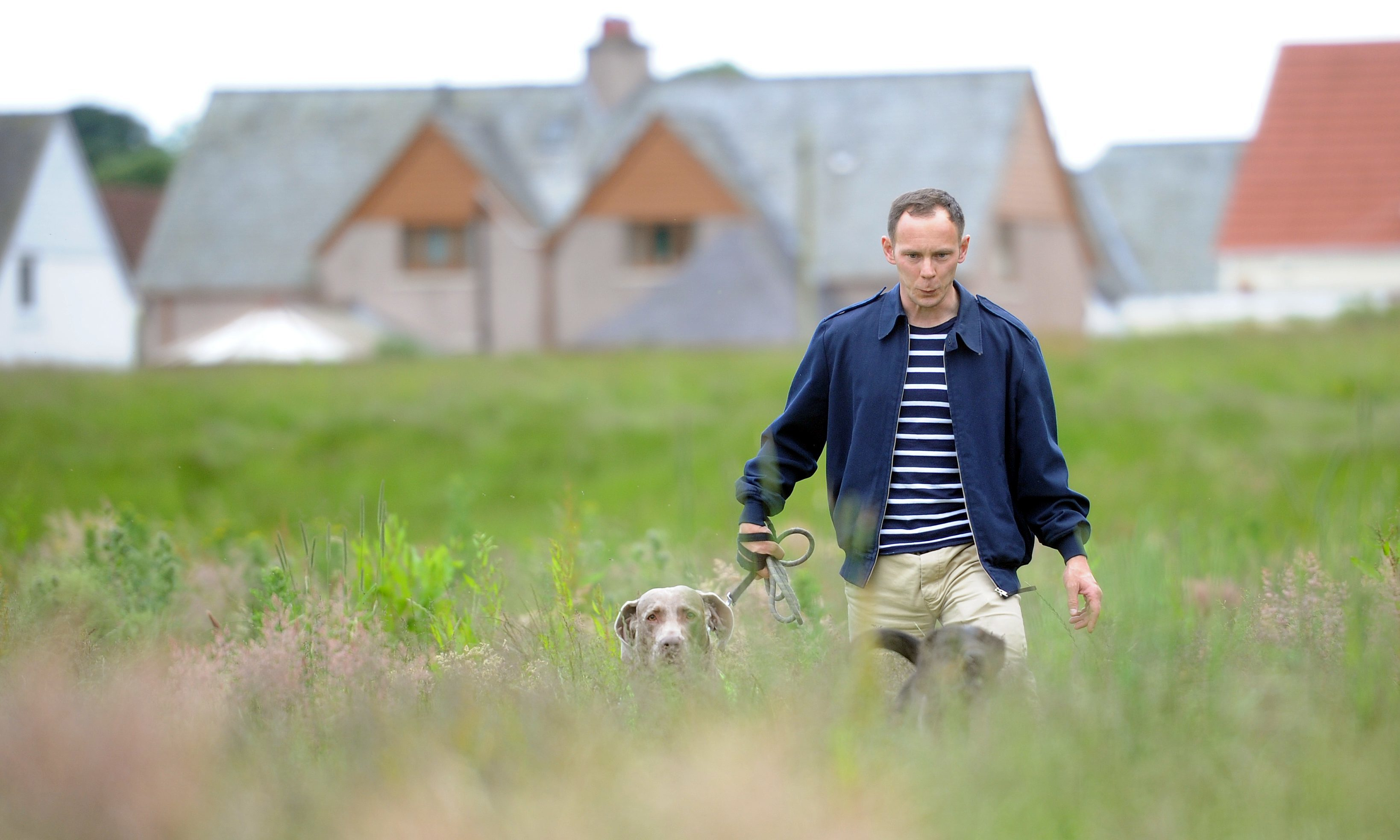 """Graham Low walking his dogs in the """"jungle""""."""