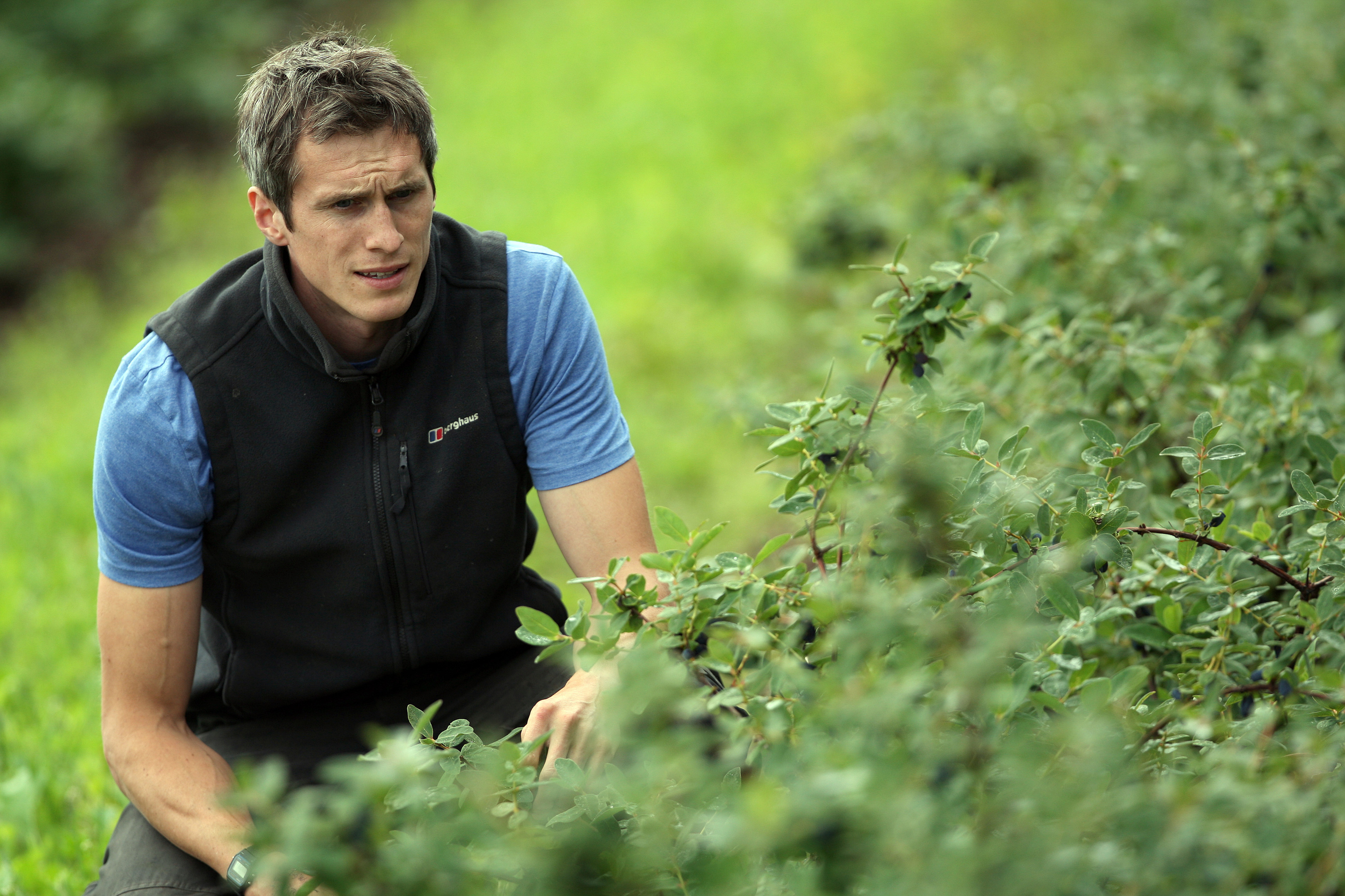 Growers are looking for new berries to meet a growing demand for soft fruit