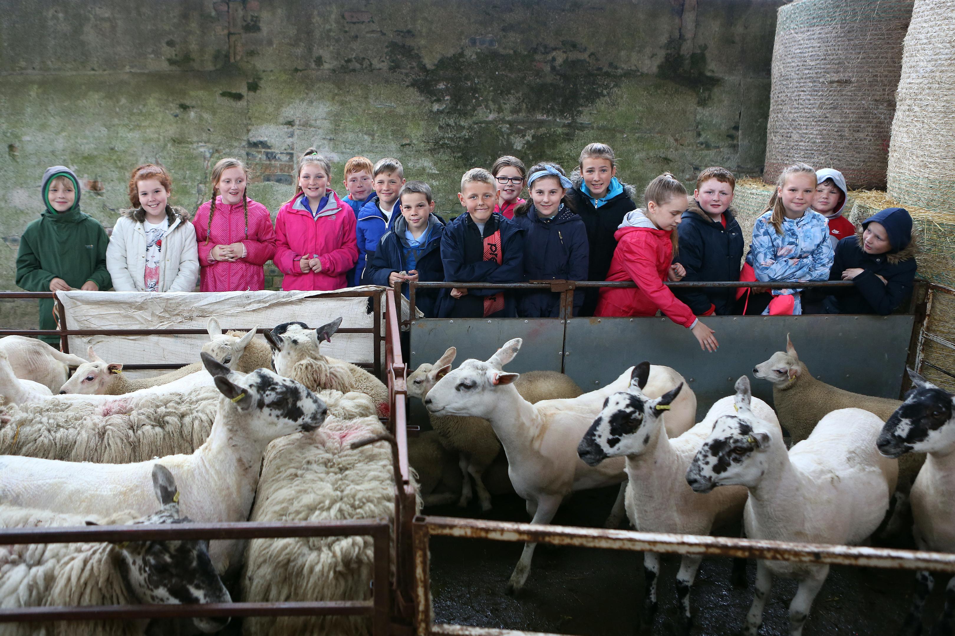 RHET takes 12,000 children to farms each year