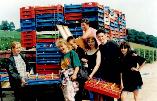 A happy group of raspberry pickers load up the pallets in August 1995