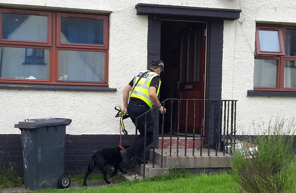 Police officers have staged drugs raids in Dundee, Perthshire and Arbroath.