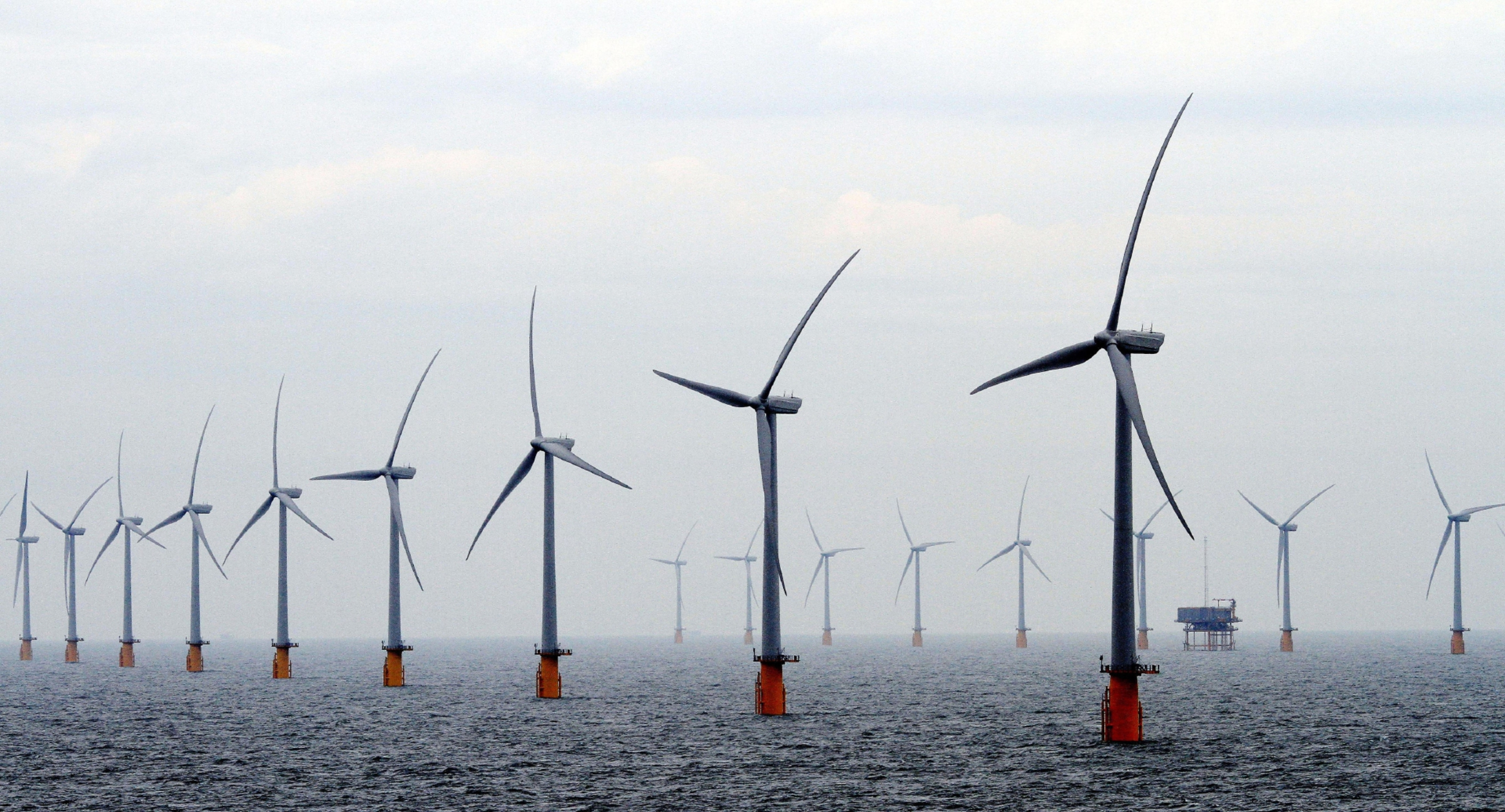 Four major wind arrays in the outer Tay and Forth estuaries are under threat