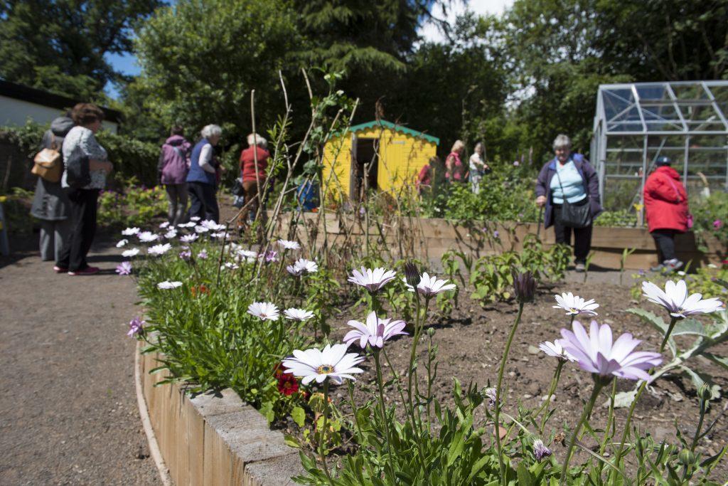 20160702- Forfar Gardening Project 002