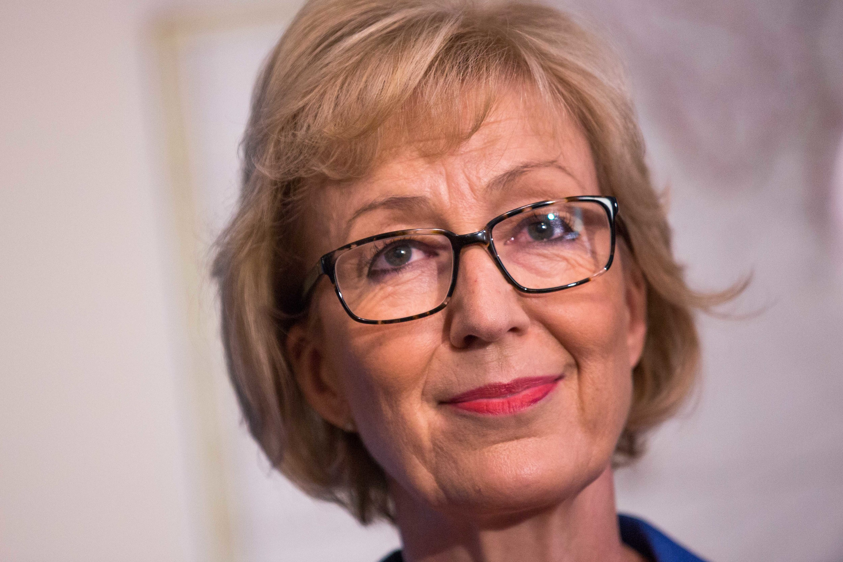 Mrs Leadsom said the meeting had been constructive